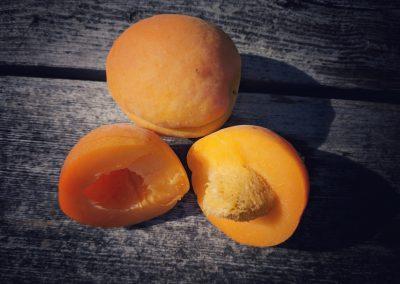 Aprikoskjerneolje